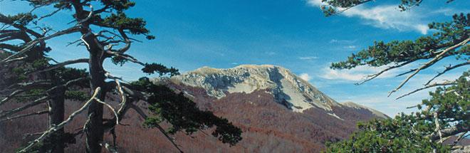 Cultura della montagna head4